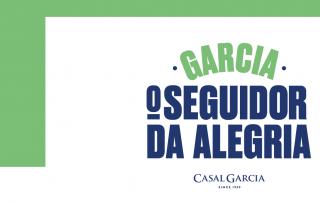 Banner Seguidor Da Alegria